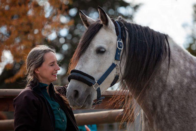 Workshop gegen Angst mit Pony und Pferd